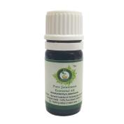 R V Essential Pure Jatamansi Essential Oil 5ml (0.169oz)- Nardostachys Jatamansi
