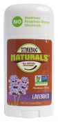 Stinkbug Naturals Lavender Deodorant Stick