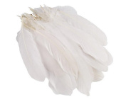 100PCS 6-23cm Goose Feather For Decoration Craft Material/Kindergarten DIY Accessories