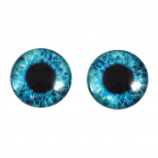20mm Bright Blue Round Glass Eyes Fantasy Taxidermy Art Doll Making or Jewellery Crafts Set of 2