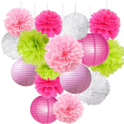 16pcs Pink Series Pom Pom Flower Ball Mixed Paper Lanterns Party Favours Tissue Paper Flower Lanterns for Birthday Baby Shower Bridal Shower Decorations Wedding Party Supplies Decorations