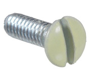 Orbit Industries CPS-75I 3-4 3-4 Cover Plate Screw Painted Ivory Sol