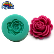 Diyclan silicone moulds for cake decorating resin flower mould