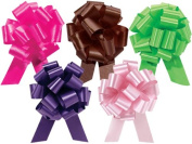 Fashion Assortment 14cm Pull Bows Set of 5 Beauty, Chocolate, Citrus, Pink, Purple