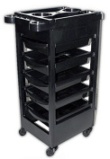 Spa Trolley Storage Cart Colouring Beauty Rollabout Hair Blow Dryer Holder
