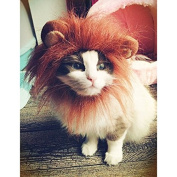 Wotefusi Halloween Pet Costume Lion Mane Wig with Ears for Dog Cat Clothes Fancy White
