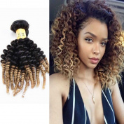 Fashion Lady Hair Products Brazilian Kinky Curly Hair Extensions 7A Unprocessed Virgin Hair Ombre Weave Human Hair 3 Bundles #1b/27 Black And Blonde,No Tangle
