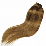 Stella Reina Subtle Ombre Colour #4/27 Chocolate Brown with Honey Blonde Highlights Balayage Human Hair Bundle Weft 100g Silky Straight Sew In Weave 41cm Short