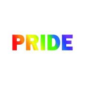 1 x PRIDE Rainbow lettering Tattoo - CSD, LGBT, Gay