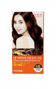Daeng Gi Meo Ri Medicinal Herb No Ammonia Hair Colour to Cover Grey
