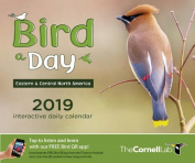 Bird-A-Day 2019 Daily Calendar