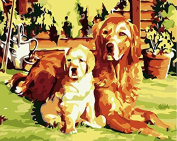 Pack of 3 Brushes 24 Paints,Golden Retriever Mother Son Look at You,DIY Oil Painting Beginner Paint by Number Art Painting Kits Canva Paintbrush and Paint Set for Adults Kids Digital Canvas Paintings