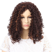 GX beauty HAIR Synthetic Afro Curly Hair Wigs Brown Blonde Ombre Wig Short Curly Wigs for Black Women