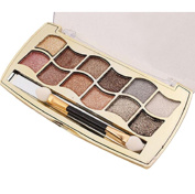 Willsa 12 Colours Women Pro Eyeshadow Warm Natural Shimmer Palette & Cosmetic Brush Makeup Set