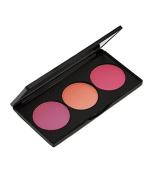 Amber Beauty Blush Palette