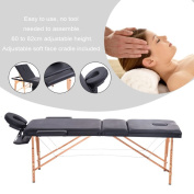 Folding Professional Adjustable SPA Therapy Beauty Salon Massage Table Bed
