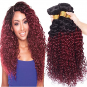 Black Rose Hair 7A Peruvian Ombre Curly Hair 4 Bundles 100% Virgin Human Hair Extensions Two Tone 1B/Burgundy Black to Red Ombre Peruvian Jerry Curly Hair Weaves 100g/pcs