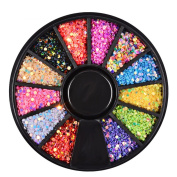 MLM Nail Art Decorations Acrylic Sparkly Sequin Glitter Nail Art DIY Tips Design Tool 12 Colour