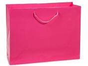 "Hot Pink Gloss Medium Gift Bags (100 Pack ) 13x 5"" x 25cm"