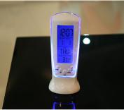 Digital Alarm Clock With Temperature Display