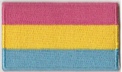 Pansexual Flag Iron On Patch 6.4cm x 3.8cm