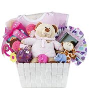 Newborn Baby Girl Gift Basket with Onesie, Plush, Toys, Piggy Bank and Picture Frame