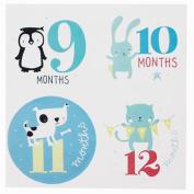 NinkyNonk 1-12 Baby Bodysuit Milestone Stickers Baby Monthly Stickers for Photo Keepsake