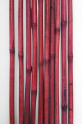 GreenFloralCrafts Decorative Bamboo Poles 140cm Tall (nearly 1.5m), Light Berry Red 10 Bamboo Sticks & Botanical Accent