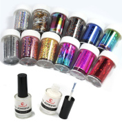 12 Colour Nail Art Transfer Foil Sticker for Nail Tips Decoration & 2 8ml Glue