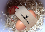 JUST GOT LAID Self Inking Rubber Stamp for use with egg cartons. 2.7cm x 4.6cm