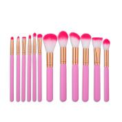 Mezerdoo Pro Pink Makeup Brushes Set Kit 12pcs Rose Gold Foundation Powder Eyeshadow Lip Kabuki Brush