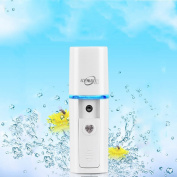 MLM Nano Facial Mister handy mist spray Atomization Eyelash Extensions Mist Atomization Facial Humectant Steamer Cool Mist Face Hydration Sprayer Beauty Instrument