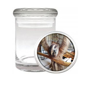 Medical Glass Stash Jar Sloth Cute Furry Animal S5 Air Tight Lid 7.6cm x 5.1cm Small Storage Herbs & Spices