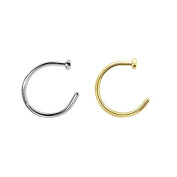 2pcs 22g Gold & Silver Plated Nose Ring Piercing Hoop 22 Gauge 3/8