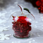 DeFancy Handmade Preserved Flowers Rose Decor with Apple-shaped Glass-Best Gift for Valentine's Day,Mother's Day,Birthday