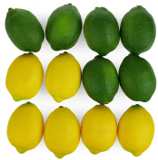 Large Artificial Lemons and Limes, Realistic Decorative Home Kitchen Fake Prop Fruit - Set of 12