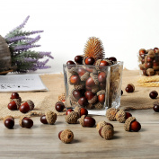 100 pieces Brown Assorted Artificial Acorn Caps, Autumn Vase Filler Decorations