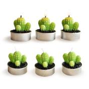 Hosaire Cactus Candles 6 Pcs Succulent Plants Smokeless Mini Tealight Candles for Home Decor
