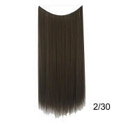 PrettyWit 60cm Straight Hairpieces Women Hair Extensions Wig Invisible Wire No Clips