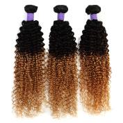 Ombre Brazilian Hair Curly Virgin Hair Weave Colour 1b/4#/27 100% Human Hair Extensions Soft and Silky Hair 3/4 Bundles 12-70cm