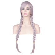 ColorGround Long Grey Cosplay Wig with 3 Braid