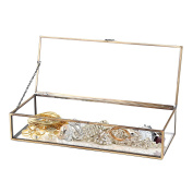 Vintage Style Brass Metal & Clear Glass Mirrored Shadow Box Jewellery Display Case w/ Hinged Top Lid