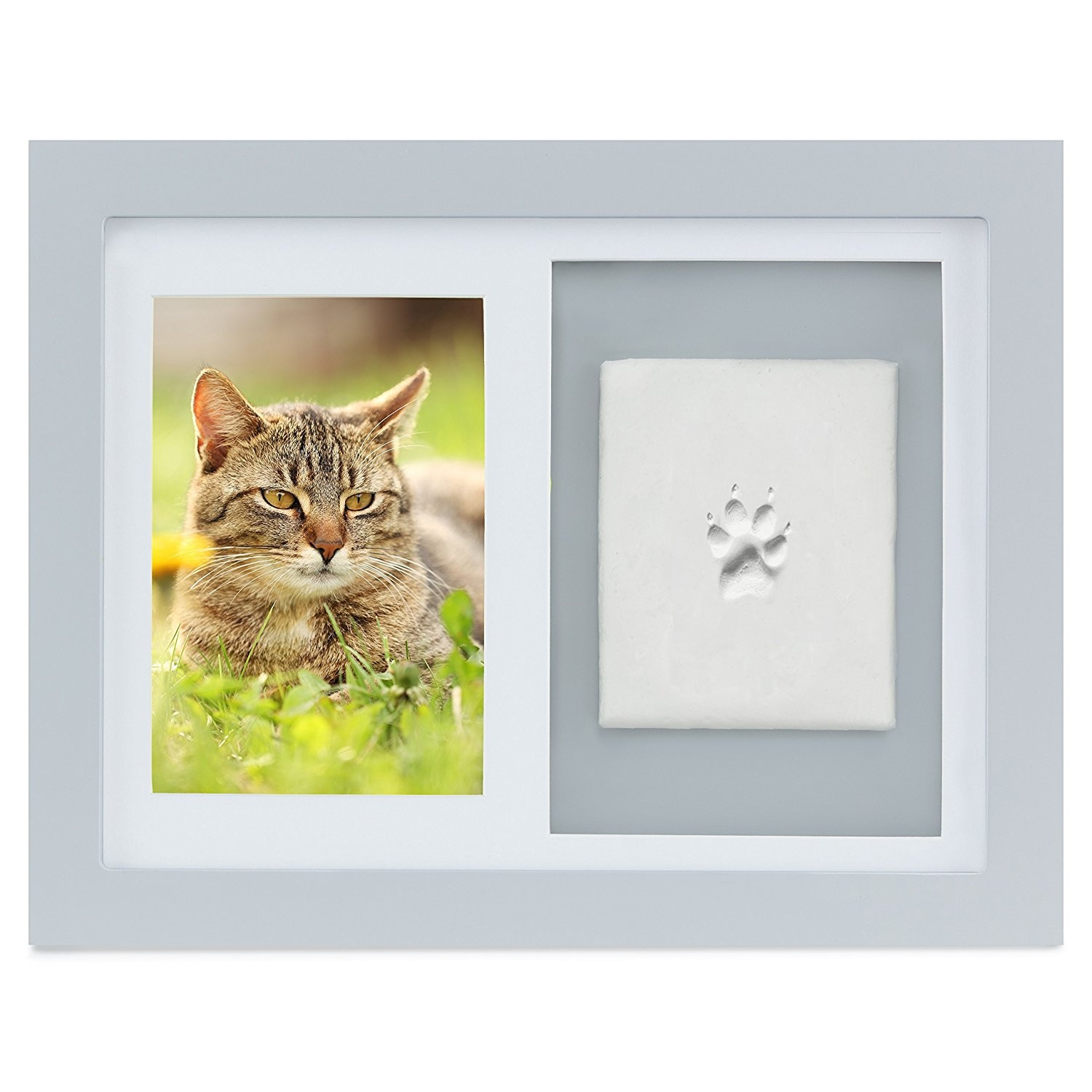 Cat Photo Frame Homeware: Buy Online from Fishpond.co.nz