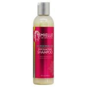 Mielle Organics Mongongo Oil Exfoliating Shampoo 240ml