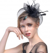 Born Beauty Retro Women Lady Girls Feather Net Veil Fascinator Hair Clip Hat for Wedding Ball Party