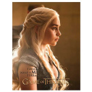 GOT FIRE AND BLOOD WALL CANVAS