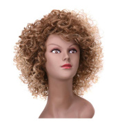 AisiBeauty Short Curly Wigs Two Tone Colour Blonde and Brown Ombre Afro Kinky Wig Side Part Heat Resistant Synthetic Wigs For African American Women