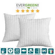 evergreenweb – Filling for cushions Furniture Memory Foam Pillows Hypoallergenic Goose Feather Effect, Anime Soft Inner For Cushions, Non-deforming Various Sizes 60 x 60, 100% made in Italy, New. Furniture Cushion, Sofa Bed Cushions, Living Room, Bed P ..