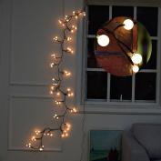 Globe String Light BaiYunPOY 2.5m LED Decorative String Lights for Garden,Wedding,Xmas Party