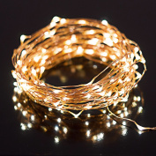LED String Lights with 100 LEDs. Waterproof Decorative Lights - 10m